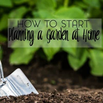 How to Start Planning a Garden at Home