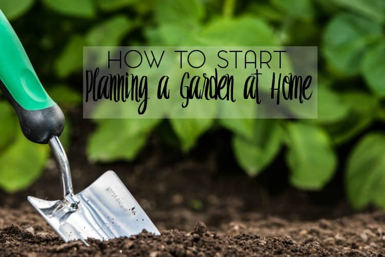 Are you looking to start a garden at home? I'm sharing my tips and advice for planning a garden.