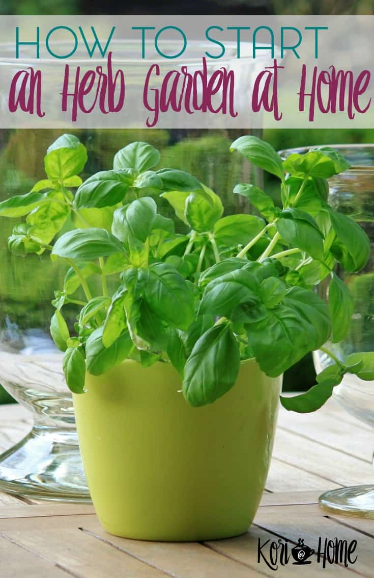 Herb gardens are usually one of the first gardens of choice for a beginning gardener. Here are some tips and a free eBook about how to start an herb garden.