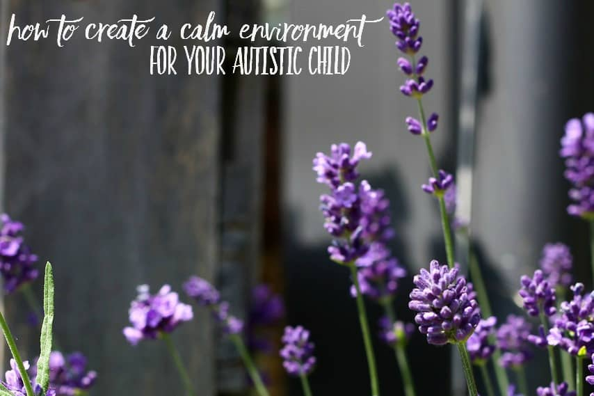 Is your autistic child particularly overwhelmed? Here are some tips and advice for creating a calming environment. We'll focus on using essentials oils for anxiety and meltdowns.