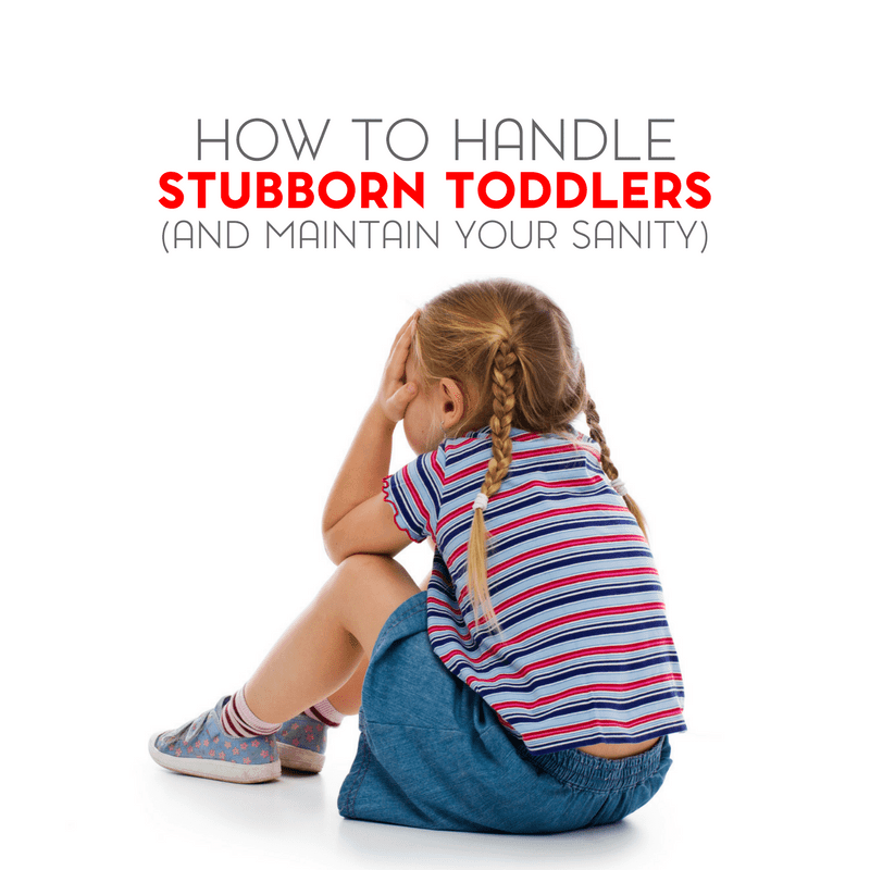How To Handle Stubborn Toddlers and Maintain Your Sanity 1
