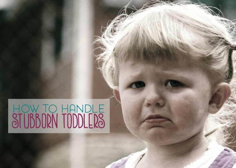 "Has your toddler recently added the word ""no"" to their vocabulary? Here are a few ways to handle stubborn toddlers and still maintain your sanity."