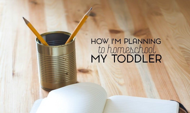 Is it really possible to homeschool a toddler or are we doing more harm than good?