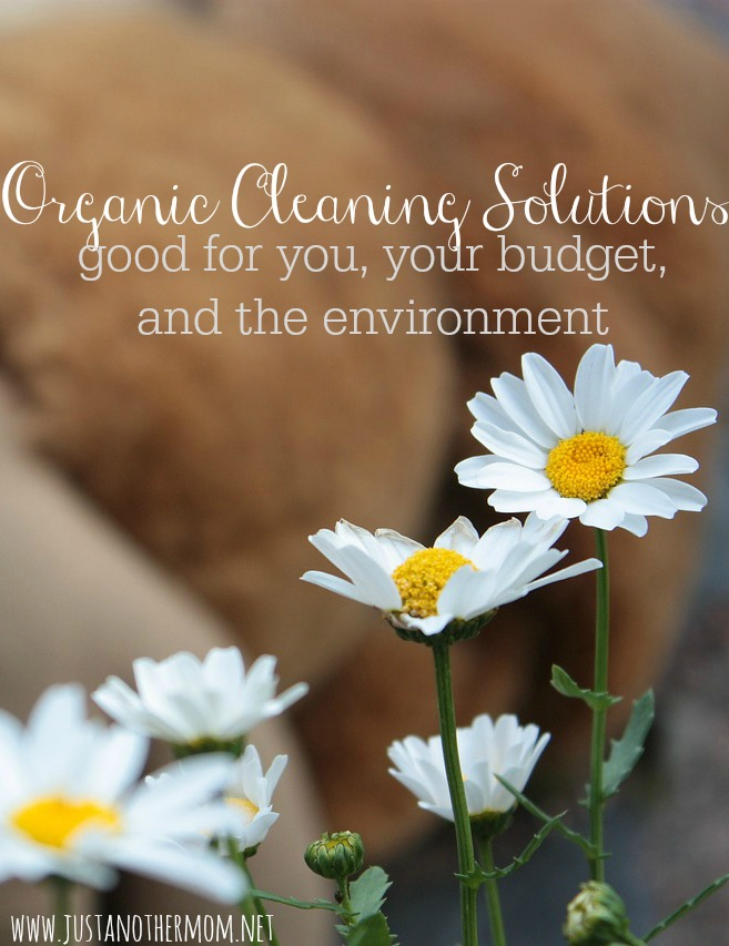 How do you find organic cleaning solutions? And for that matter, can you find organic cleaning solutions that are also budget friendly?