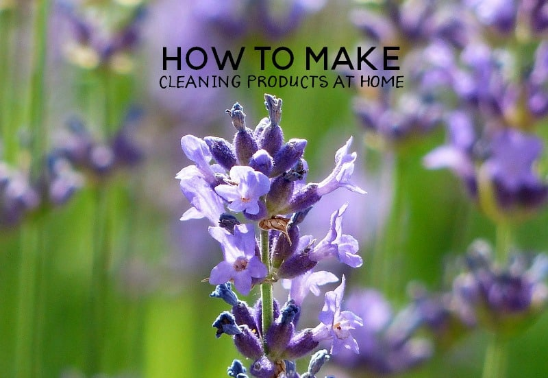Spending a fortune on cleaning products? Try making them at home.