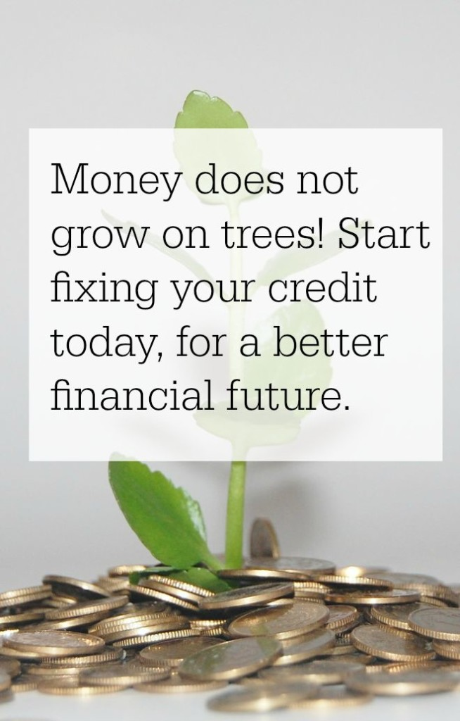 start fixing your credit today