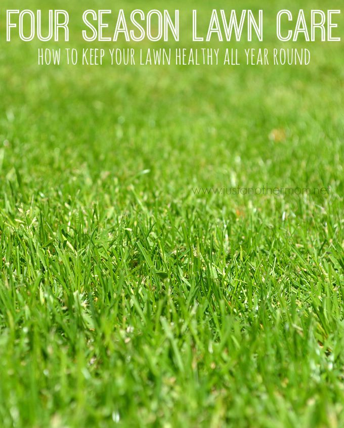 Lawn care doesn't just end when the colder weather arrives. Here are some tips and advice for four season lawn care.