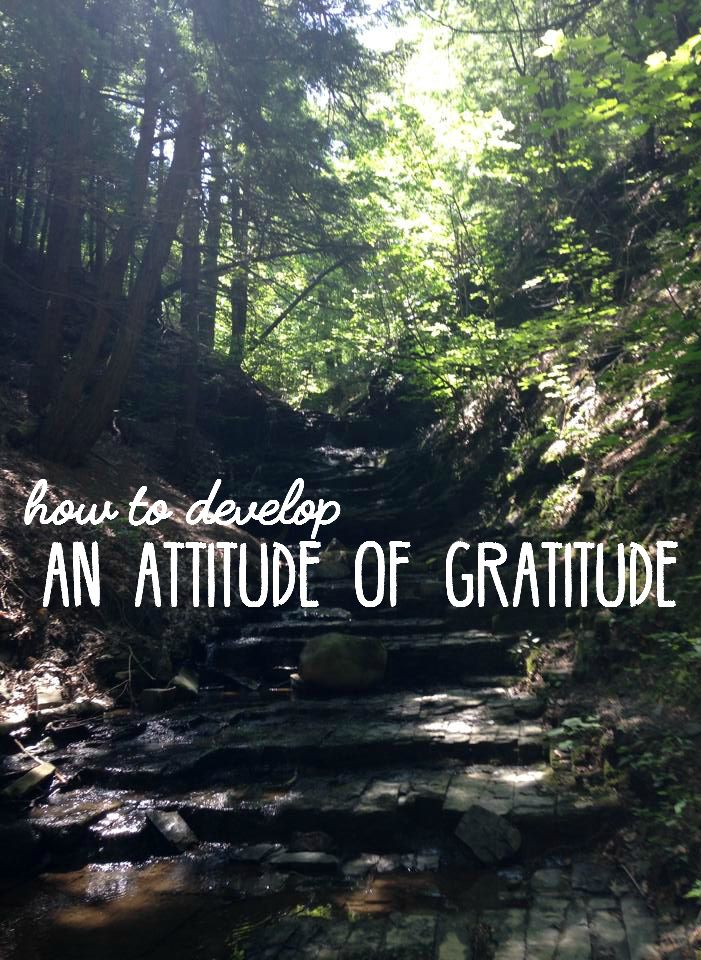 Do you constantly find yourself wanting more than you already have? While there's nothing wrong with that, it's also important to develop an attitude of gratitude.