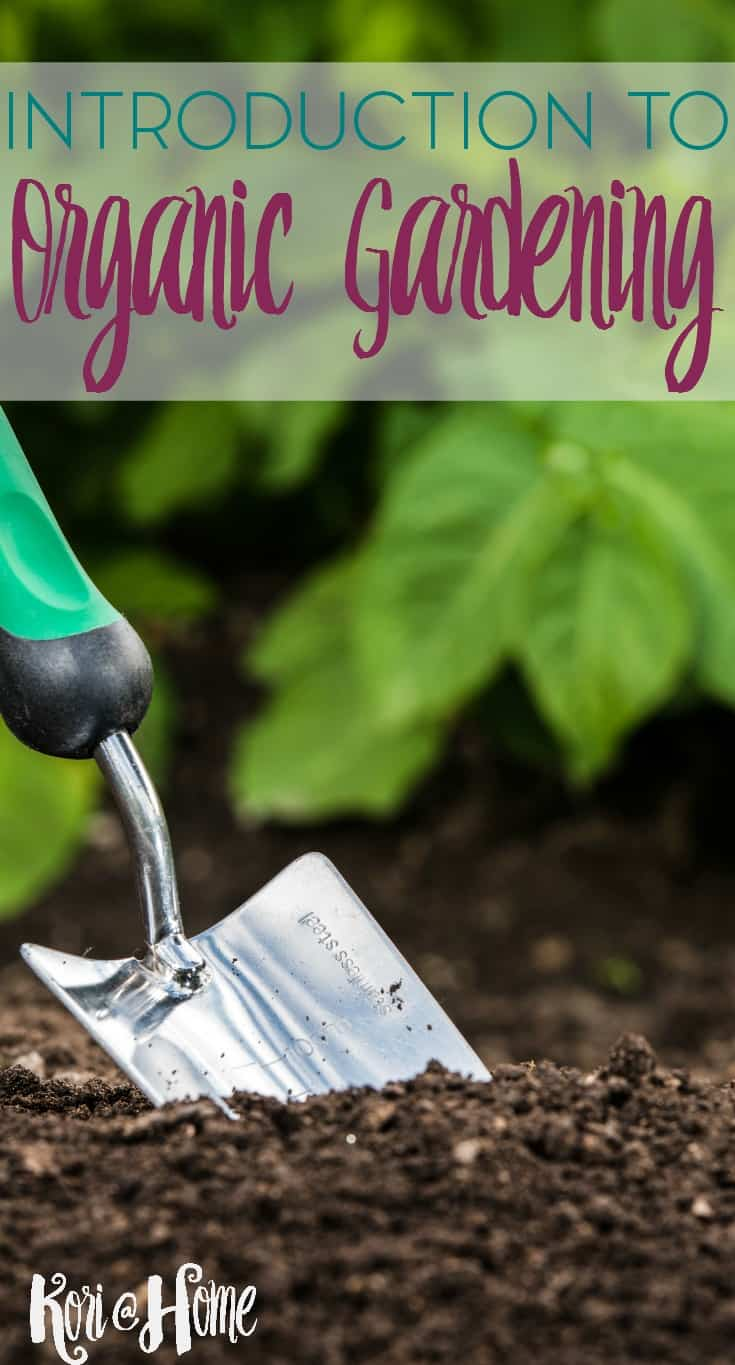 Is organic gardening really that much different than regular gardening? And is it worth the time and effort?