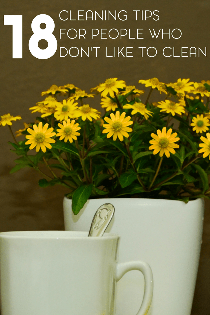 Spring Cleaning Tips and Advice for People Who Don't Like to Clean 1