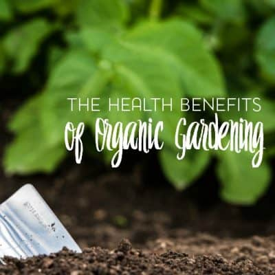 Health Benefits of Organic Gardening