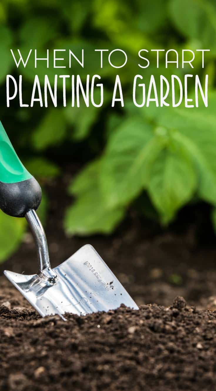 Location matters when it comes to planting your garden and planning your garden. Here are some tips and advice for when to start planting your garden at home.