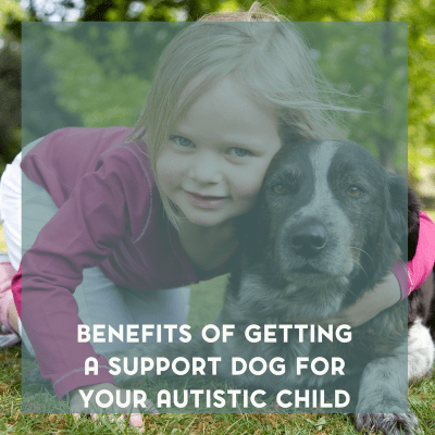The Benefits of Getting a Support Dog for Your Autistic Child