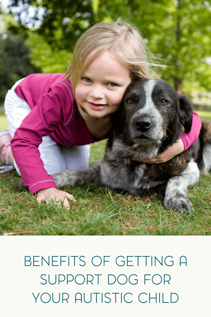 Have you considered getting a therapy or support dog for your autistic child? Be sure to read about the benefits here.