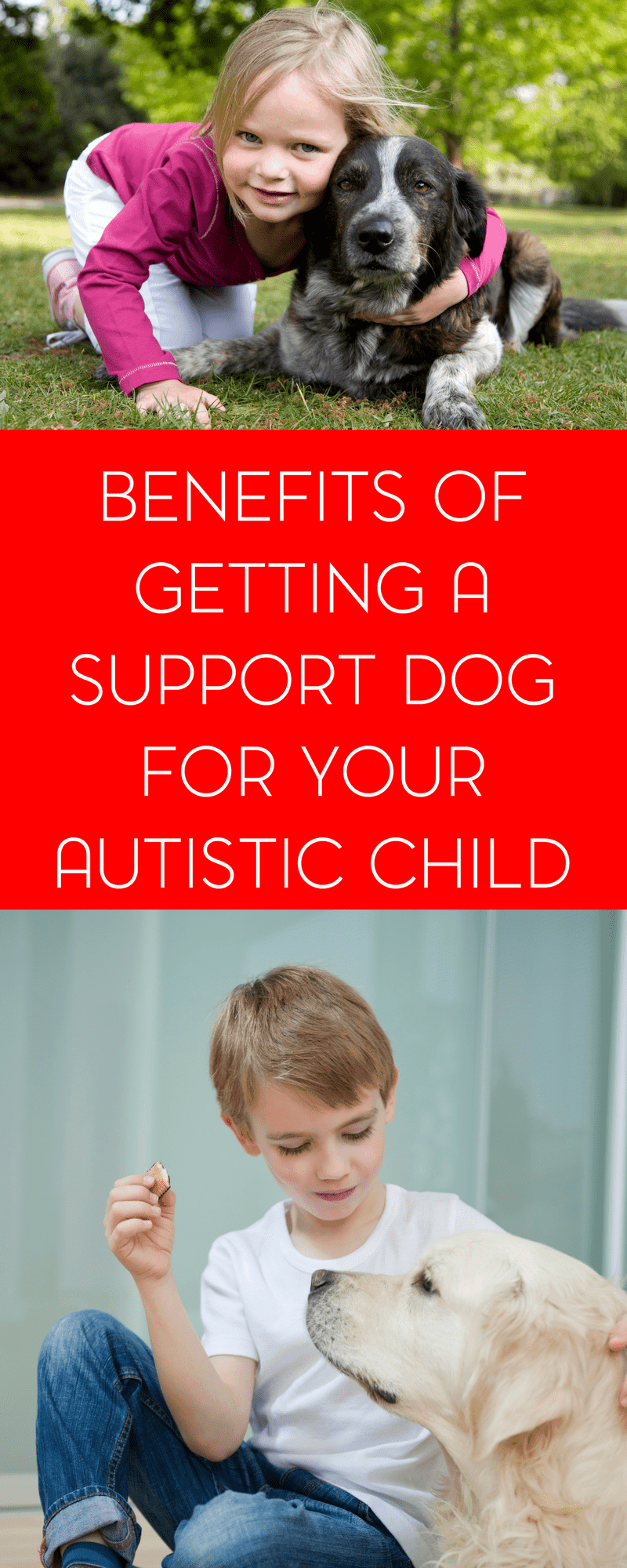 A therapy or support dog can be incredibly beneficial for autistic child. Non verbal autistic children, in particular, may benefit in so many ways.