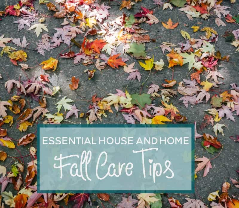 House and Home Care Tips for Fall