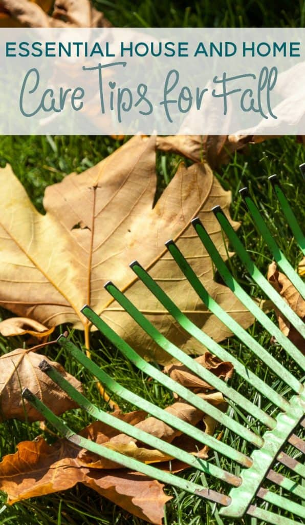 essential house and home care tips for fall