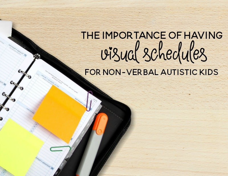the importance of having visual scheduels for nonverbal autistic children