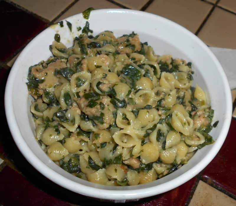 spinach and salmon mac and cheese