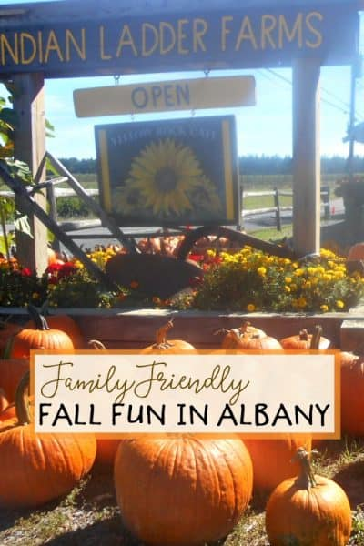 Family Friendly and Fun Fall Activities In and Around Albany