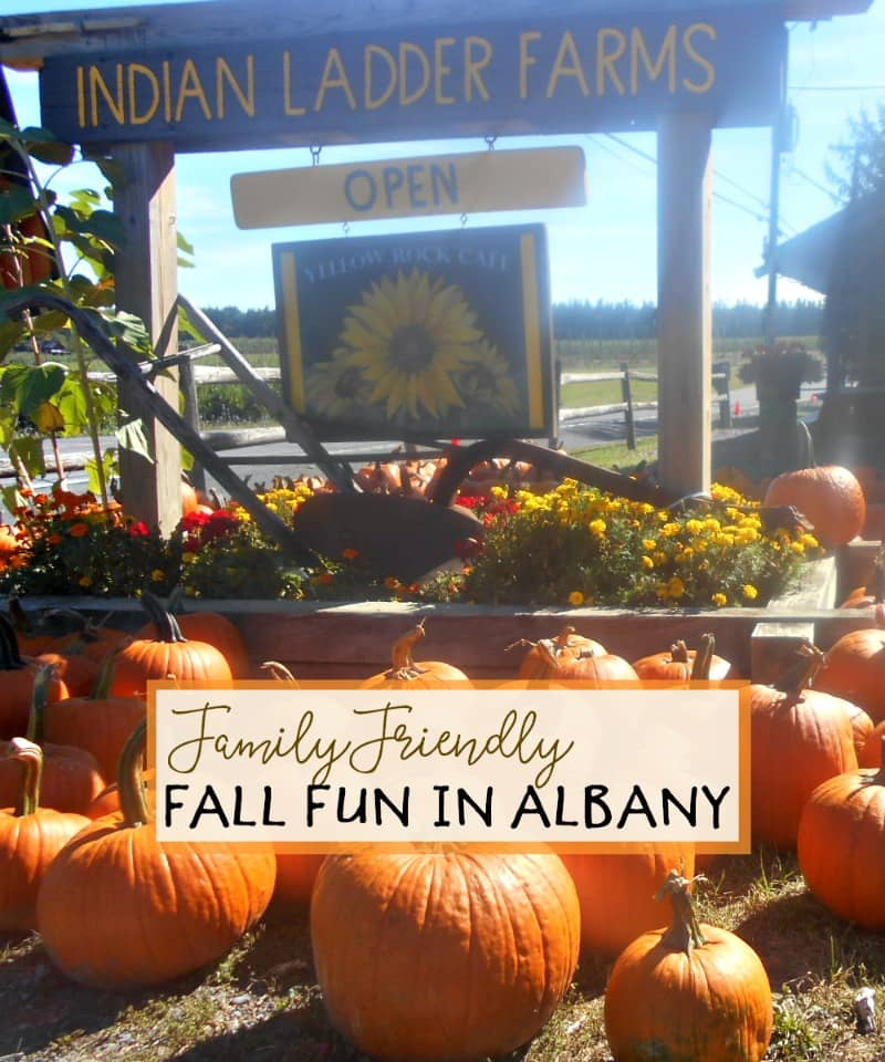 family-friendly-fall-fun-in-and-around-albany