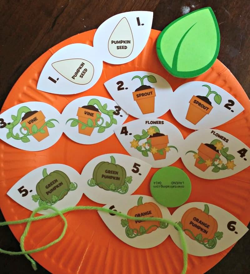 pumpkin-life-cycle-in-progress