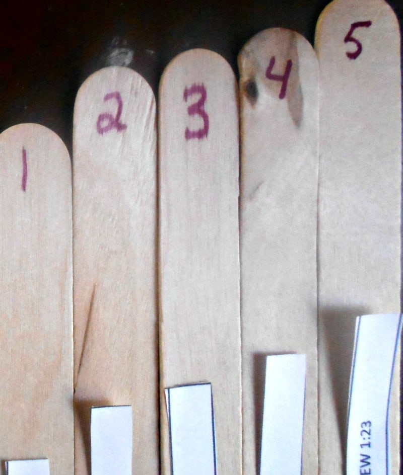 label-the-sticks