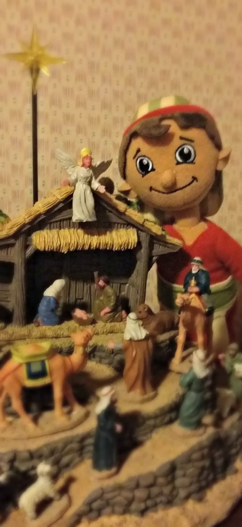 our-shepherd-behind-the-nativity-display
