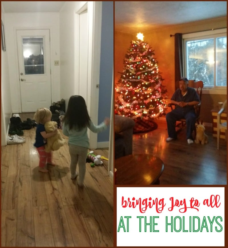 Spreading Joy For All During the Holidays 1