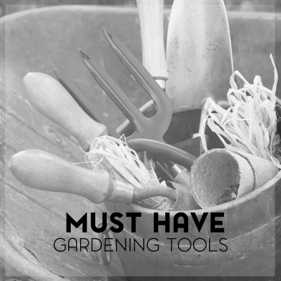 Must Have Gardening Tools for the Beginning Gardener