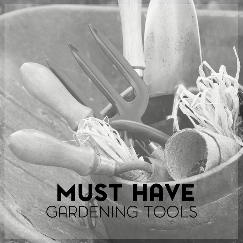 Must Have Gardening Tools for the Beginning Gardener