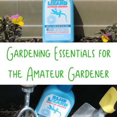 Gardening Essentials for the Amateur Gardener