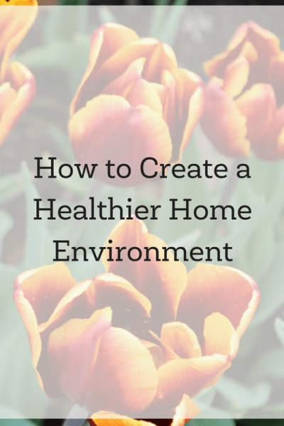 How to Create a Healthier Home Environment and a Healthier World