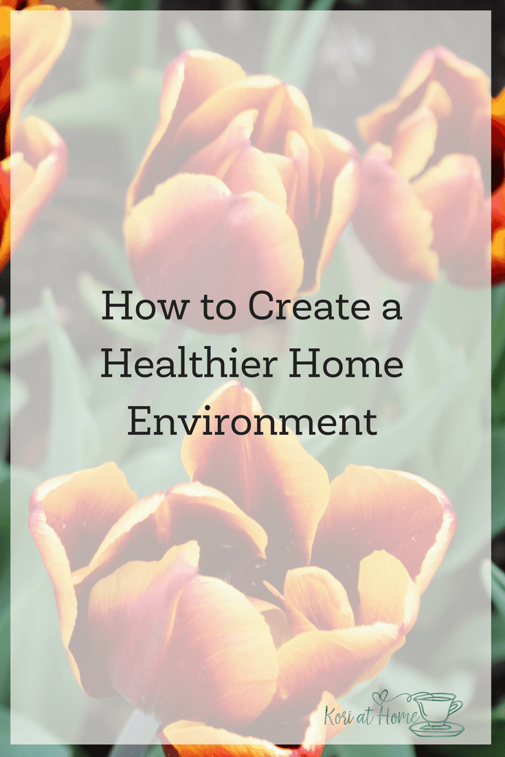 How to Create a Healthier Home Environment and a Healthier World 1