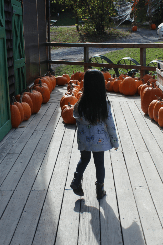 Fall Fun Ideas to Keep Your Family Outdoors 8