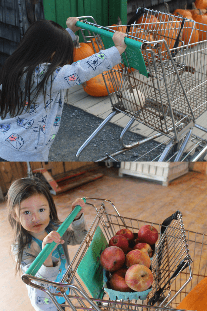 Fall Fun Ideas to Keep Your Family Outdoors 10