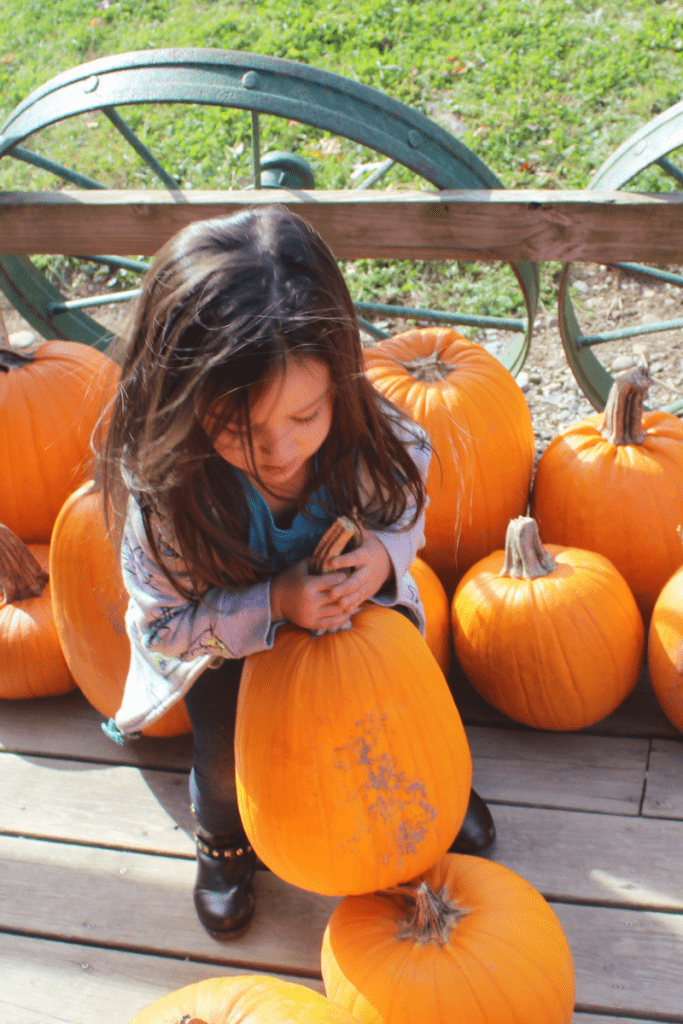 Fall Fun Ideas to Keep Your Family Outdoors 9