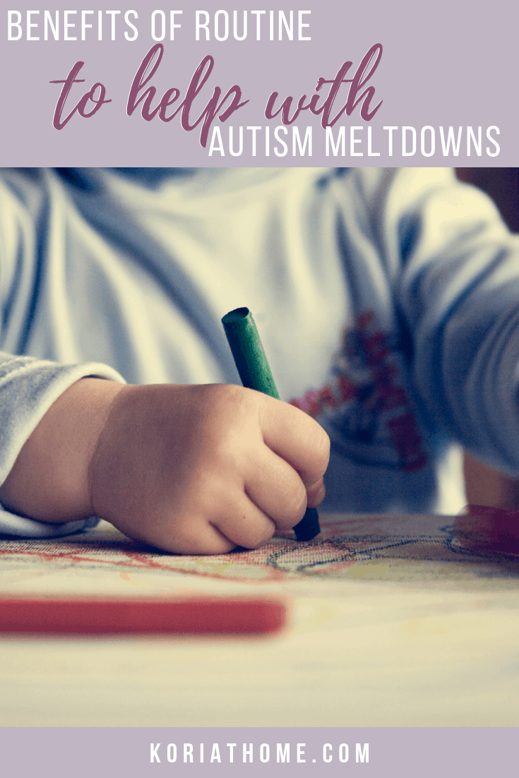 The Benefits of Routine and Structure for Autism Meltdowns 1
