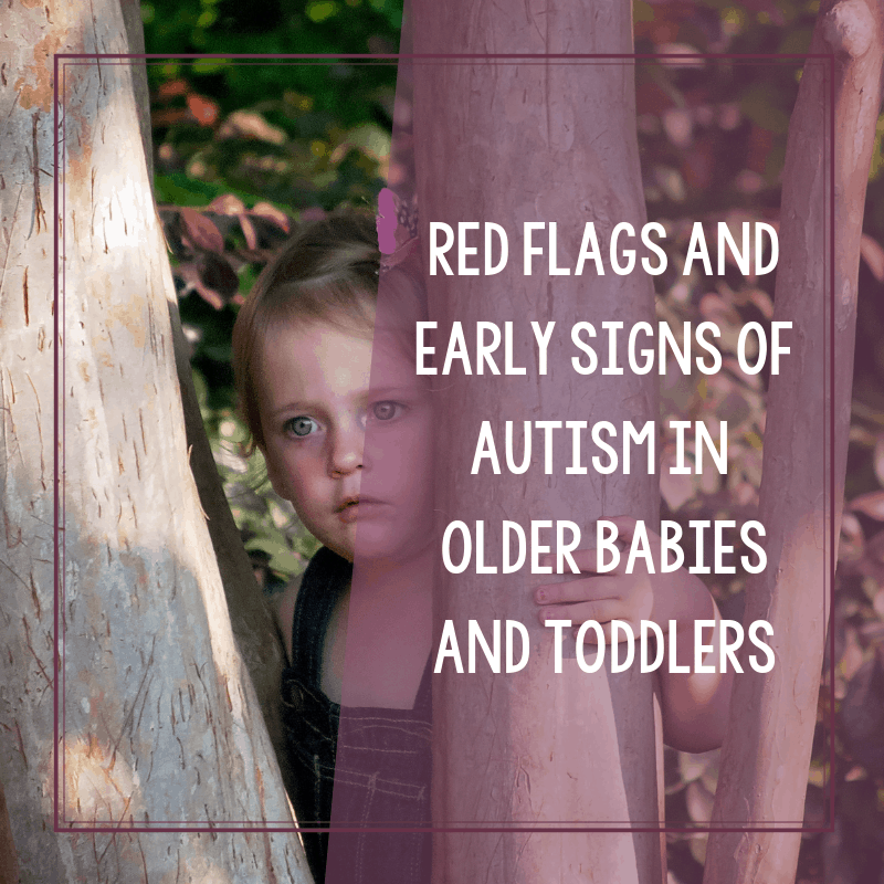 Red Flags and Early Signs of Autism in Older Babies 3