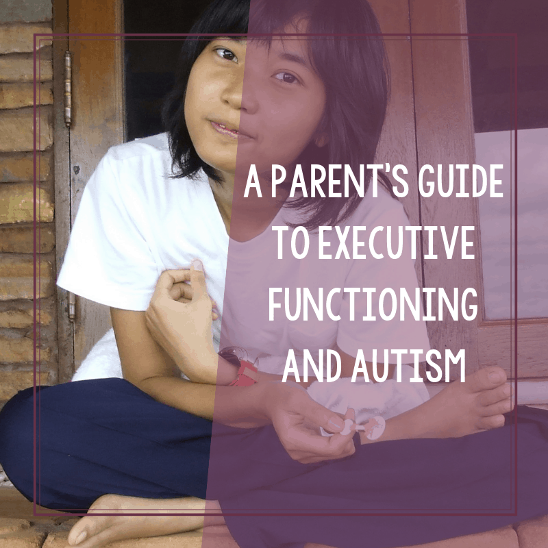 A Parent's Guide to Executive Functioning and Autism 2
