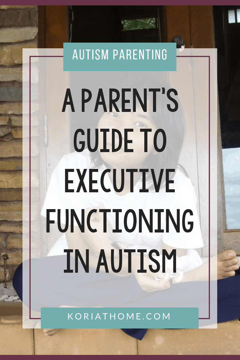 A Parent's Guide to Executive Functioning and Autism 3
