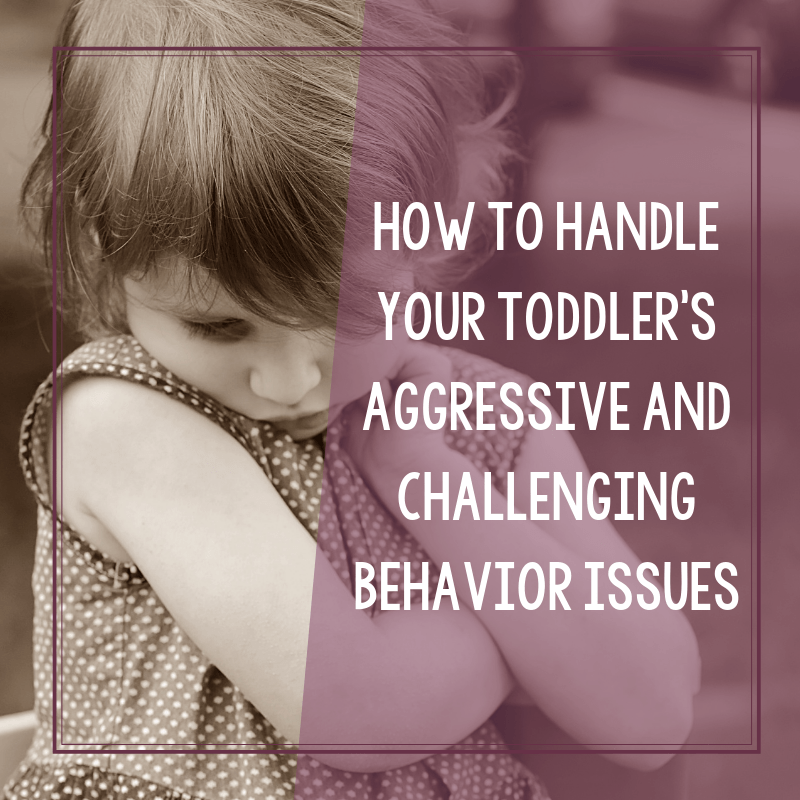 How to Stop Your Toddler's Bad Behavior Issues 2