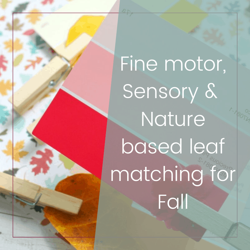 Fine Motor and Sensory Nature Based Color Matching Game 2