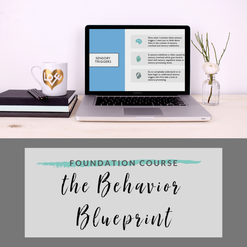 the behavior blueprint foundation course