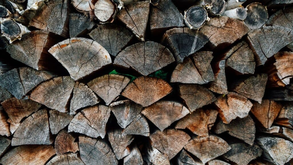 Simple Tips for Storing Your Firewood This Winter 1