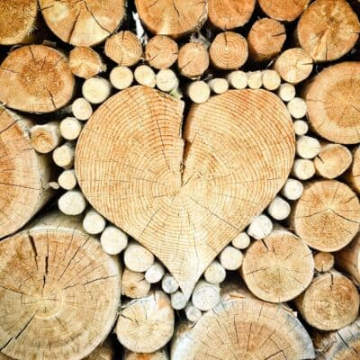 Buying Firewood For Your Home