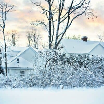 Important Post-Winter Care for Your Home